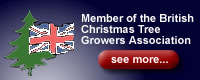 British Christmas Tree Growers Association