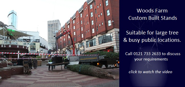 Woods Farm commercial Christmas tree services for office 